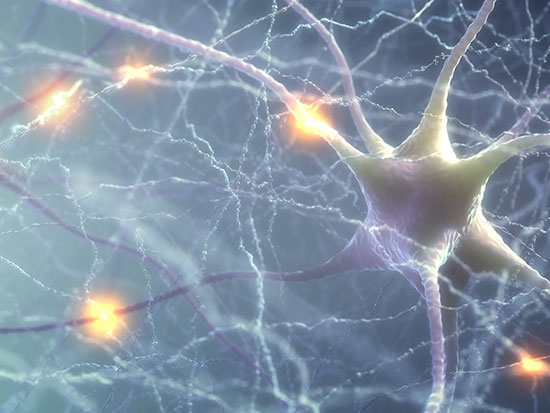 Untangling brain neuron dysfunction in Parkinson's disease and dementia with Lewy bodies
