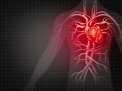Immune cell target identified that may prevent or delay heart failure after pressure overload