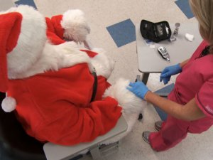 UAB GRADE study for diabetes: Saving Santa and you