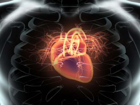 New study compares different approaches for stroke prevention in patients with non-valvular atrial fibrillation