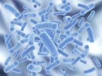 Defined healthy microbiome to shake up understanding of many diseases