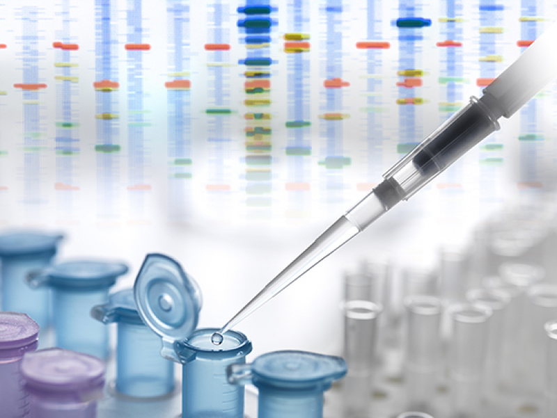 UAB joins NIH consortium on genomics for assessing and managing risk of common diseases2