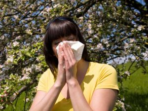 OTC meds, neti pots can relieve most seasonal allergies