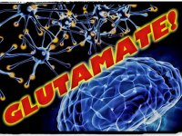 Mr. Excitement: What glutamate can teach us about depression, schizophrenia, cancer and more