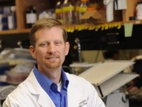 Targeting platelet production could be strategy in ovarian cancer therapy