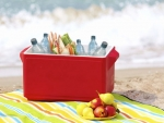 To keep summer travel fare healthy, prepare