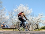 Bicycle safety: Know the laws, prepare accordingly before you ride