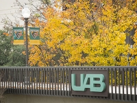 UAB research funding continues to increase