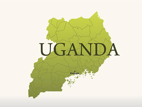 Analysis of Ugandan cervical carcinomas, an aid for understudied sub-Saharan women