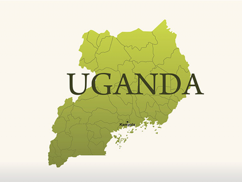 Analysis of Ugandan cervical carcinomas, an aid for understudied sub-Saharan women