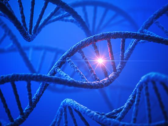 Undiagnosed diseases program finds novel genetic variant