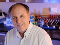 Epigenetics leader named recipient of UAB's Ireland Prize for Scholarly Distinction