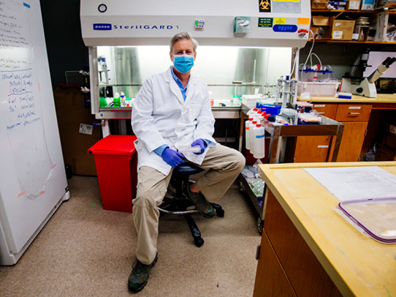 Tackling his third pandemic, UAB researcher gets up close with coronaviruses in order to kill them