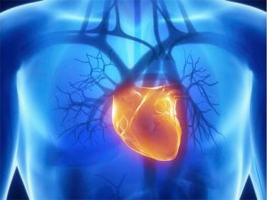 Largely dismissed heart failure drug may help solve costly problem for Medicare and hospitals