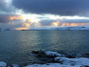 UAB Antarctica website, researchers launched this week