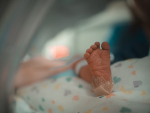 Model probes possible treatments for neonatal infection, a common cause of infant death
