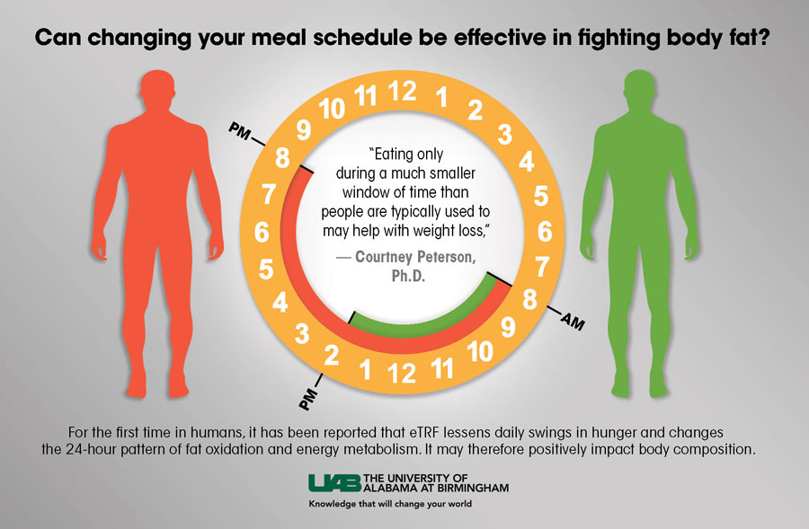 Diagram showing how changing meal schedule can be effective in fighting body fat.