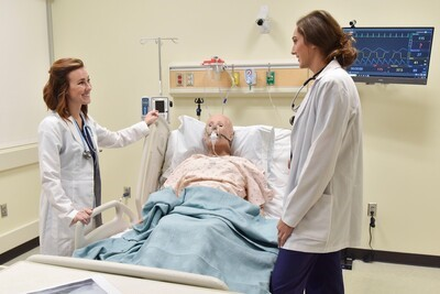 Master of Science in Nursing (MSN)