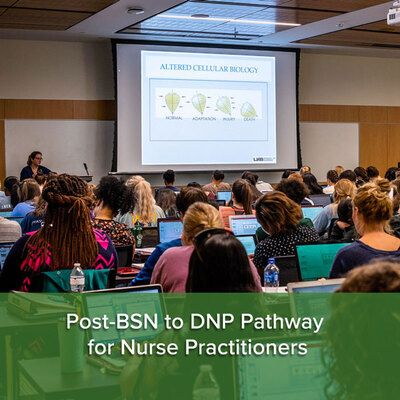 Post-BSN to DNP Pathway for Nurse Practitioners