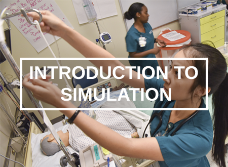 Intro to Sim