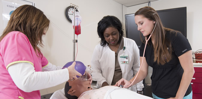 role of professional nurse in pcc Professional development the education and role of the clinical nurse leader nursing education and the profession have an unparalleled opportunity and.