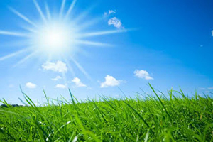 The sun shining brightly over a grassy field.