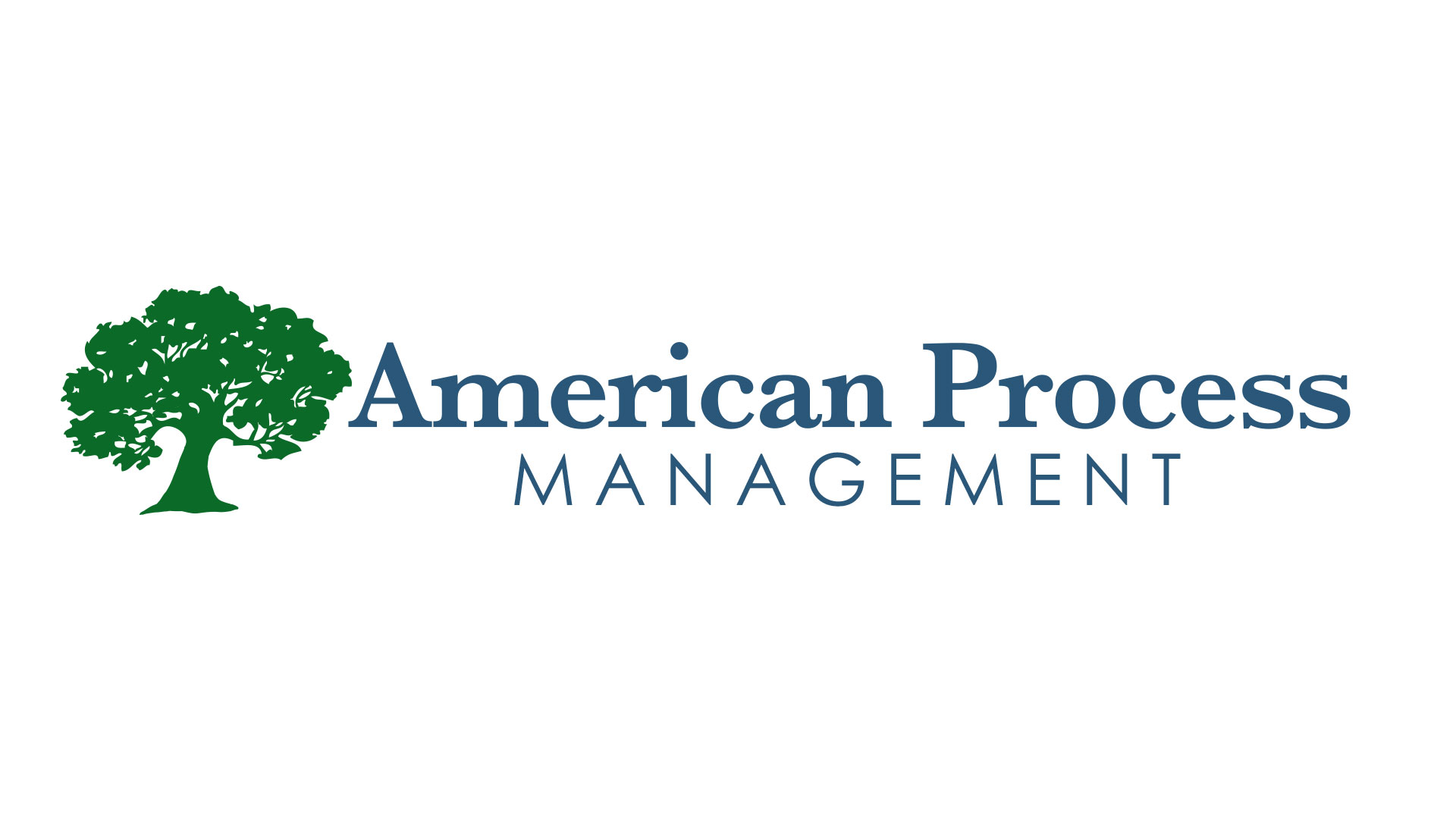 American Process Management