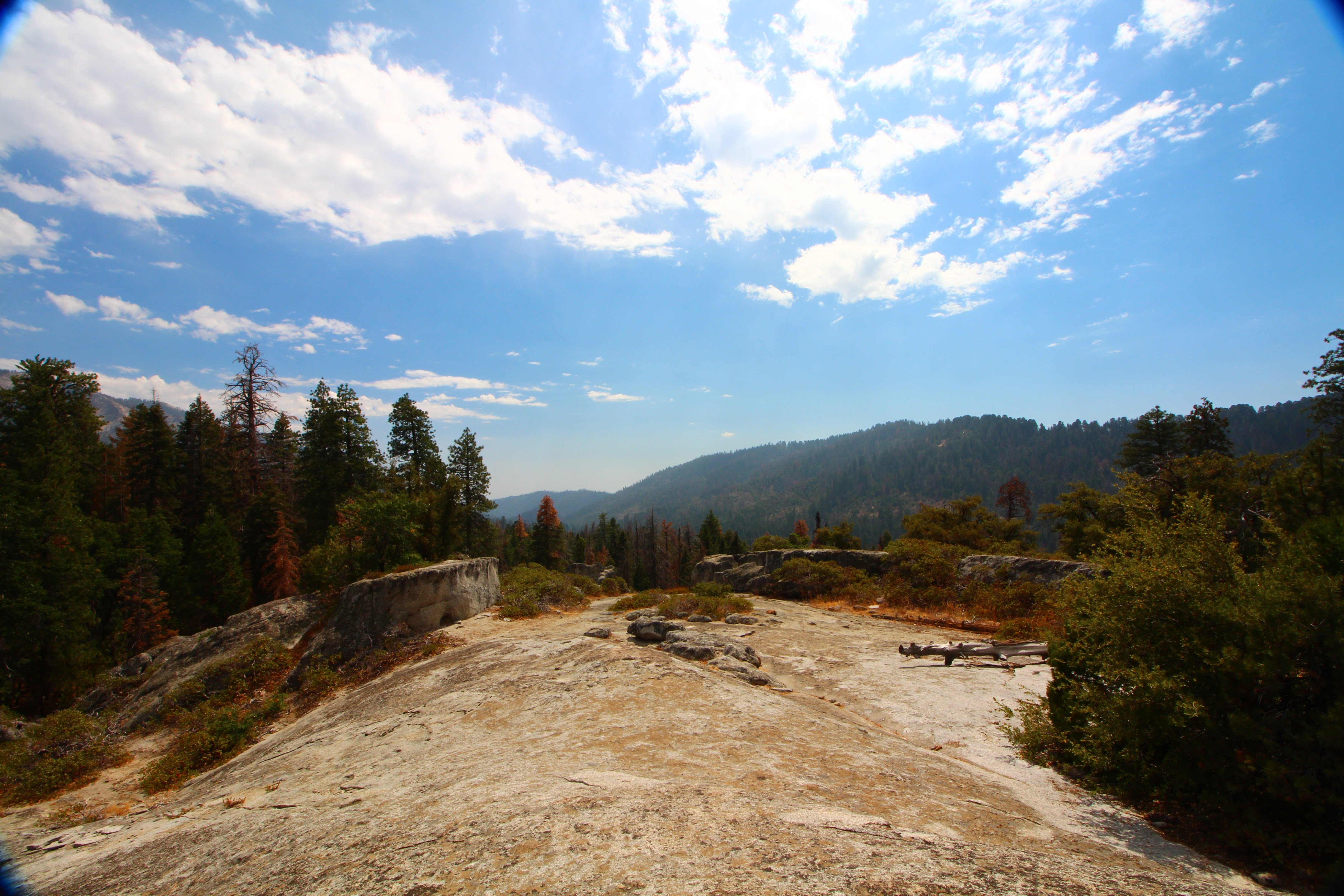 17Redwood Canyon In Kings Canyon National Park