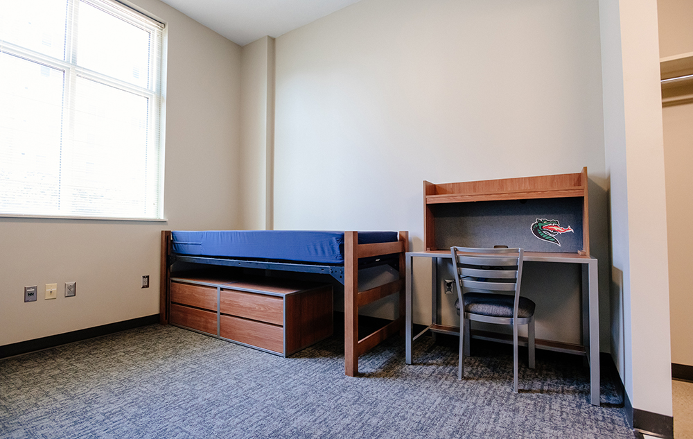 Green Hall Dorm Room 2   Widget