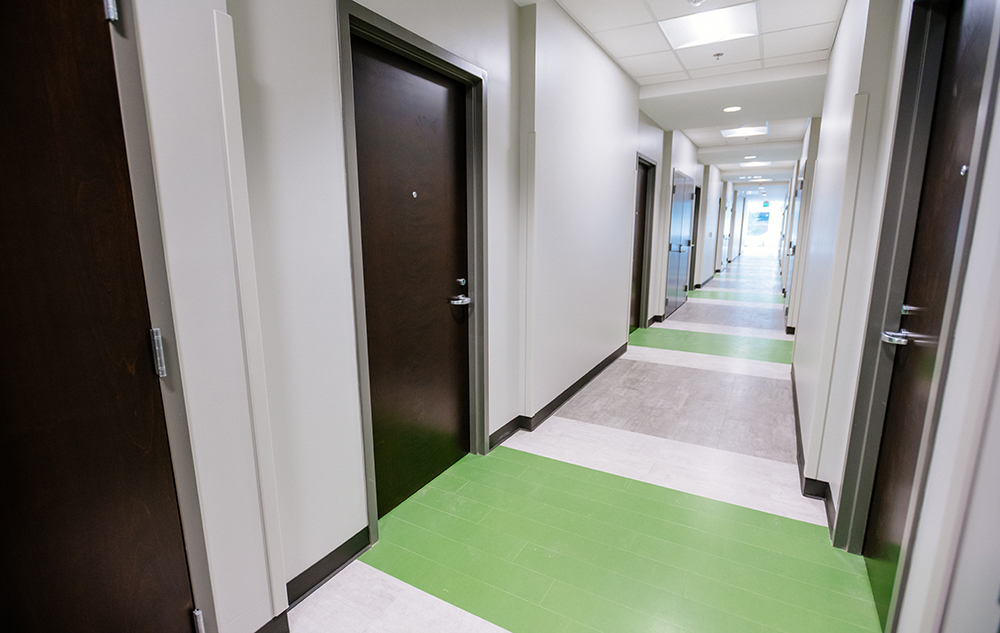 Green Hall Interior Hallway   Iwdget