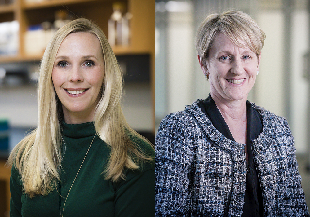 2 women faculty create new experiences as Honors Faculty Fellows