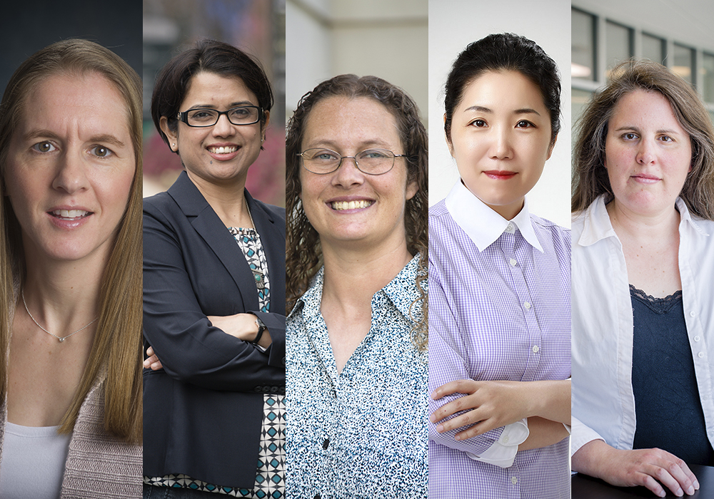 5 women faculty develop team-based research courses for undergrads
