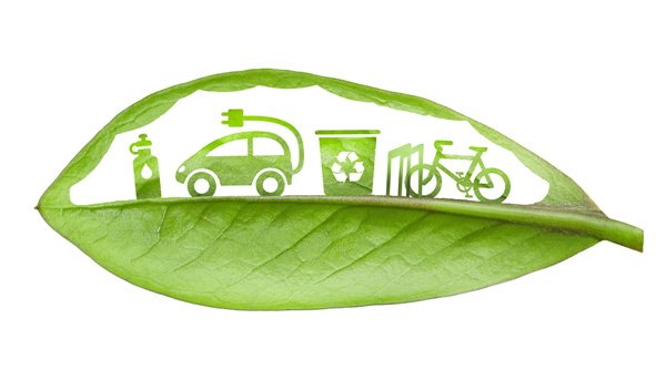 sustainability leaf icons