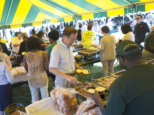 Enjoy live music, buffet lunch at the Picnic on the Green Oct. 18