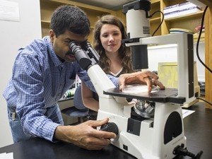 New faculty fellowship to expand undergraduate research opportunities