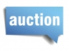 Surplus auction to be held Nov. 14