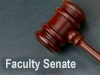 Faculty elects new officers, senators