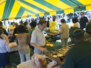 Enjoy live music, buffet lunch at the Picnic on the Green