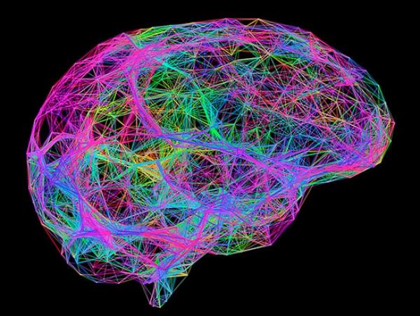 Why neuroengineering is a smart career choice