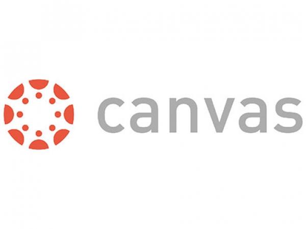 Canvas Success site launches