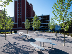 Meet the Townhouse Park, UAB's newest green space
