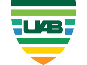 Nominations now being accepted for new UAB VIP Award