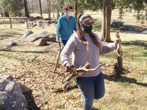 Honors College students volunteer at Red Barn