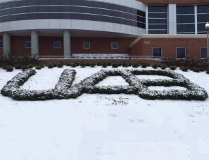 UAB Winter storm 2014