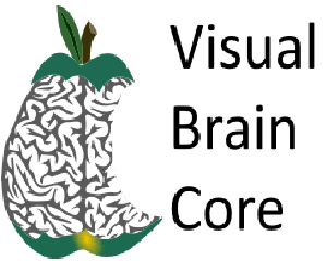 Visual Brain Core