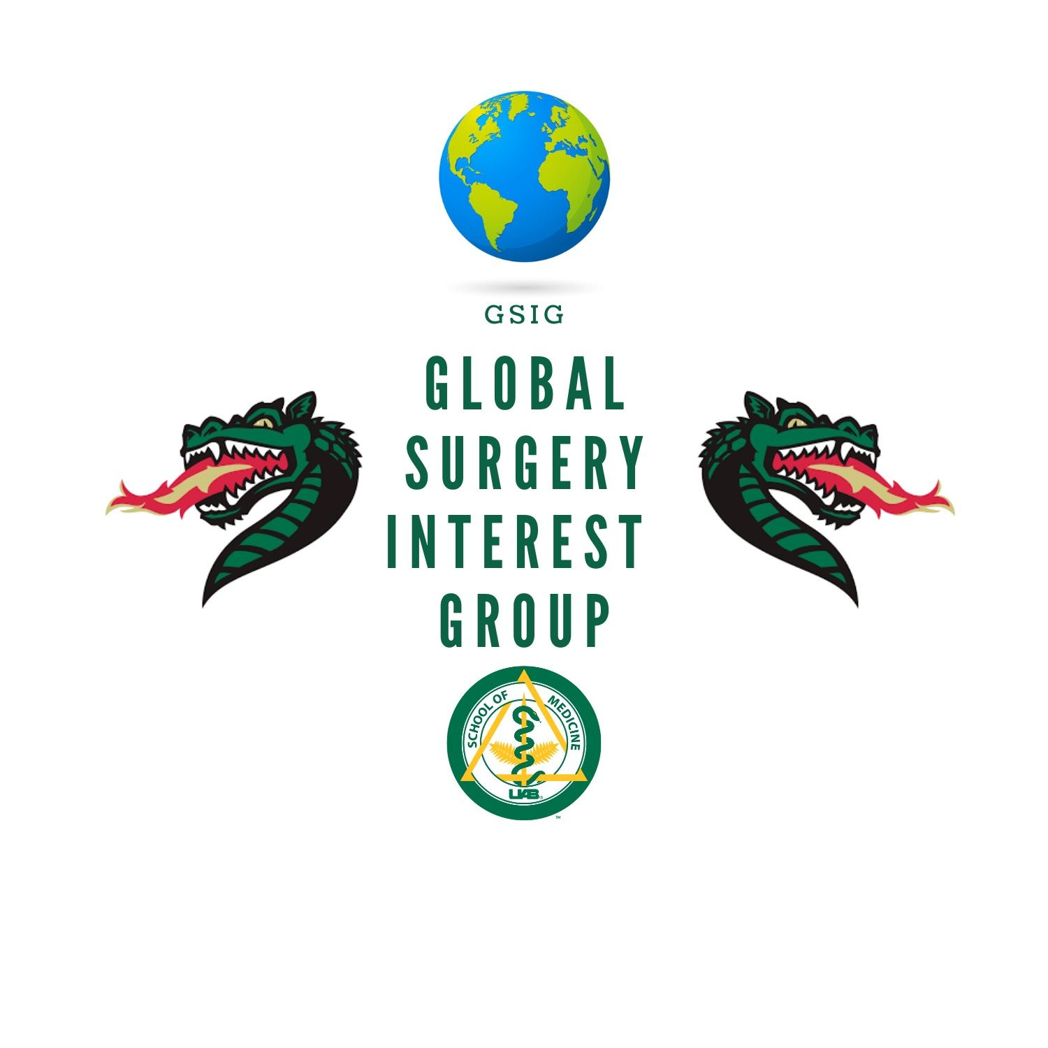 Global Surgery Interest Group