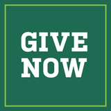 square button with text reading Give Now