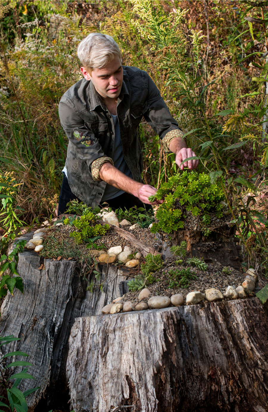 Photo of Jon Woolley adding greenery and rocks to the top of a tree stump