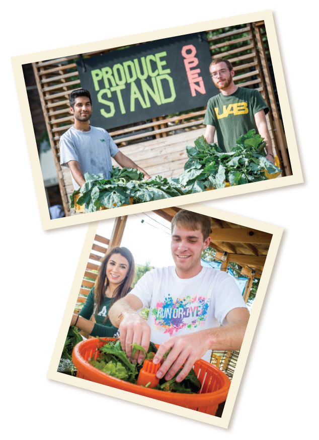 Photos of students working at the Jones Valley farm stand