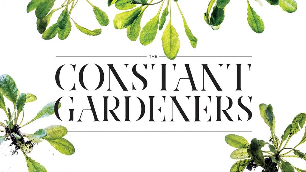The Constant Gardeners